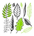 leaves collection for vector image