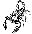 scorpion2 vector image vector image