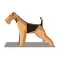 terrier minimalist image1 vector image vector image