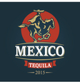 Horseman mexican in poncho and sombrero rides vector image