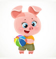 cute cartoon baby piglet with color ball toy vector image vector image