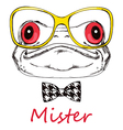 Portrait of a frog on a white background with glas vector image vector image