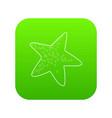 starfish icon green vector image vector image