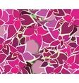 Bouquet Beautiful Pink Flower Seamless Pattern vector image