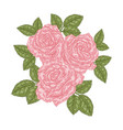 bouquet pink roses floral composition spring vector image vector image
