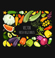 collection ripe vegetables vector image
