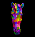 colorful horse head with abstract modern vector image vector image