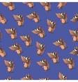 Cute cartoon armadillo