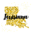 Golden glitter of the state of Louisiana vector image vector image