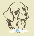 hand drawn portrait dog labrador vector image