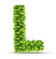 Letter L alphabet of green leaves vector image vector image