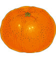 ripe whole orange tangerine vector image vector image
