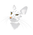 White cat with yellow eyes vector image vector image