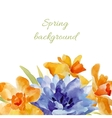 Spring background Watercolor lowers vector image