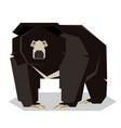 flat polygonal sloth bear vector image vector image