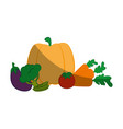 healthy vegetables design vector image vector image