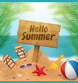 hello summer wooden signboard on the beach scene vector image vector image