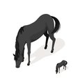 Isometric 3d black horse vector image vector image