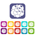 ovary icons set vector image vector image