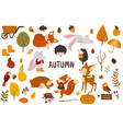 set isolated cozy autumn and elements vector image vector image