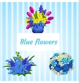Three bouquets in blue and colored flowers vector image