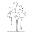 three graceful flamingos on a white background vector image vector image