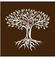 Abstract stylized tree with roots and leaves vector image