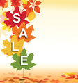 Autumn retail background vector image