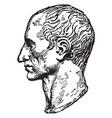 bust of julius caesar vintage vector image vector image