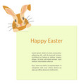 cute easter bunny looks out vector image vector image