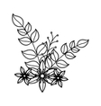 decorative flower isolated icon vector image vector image