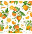 mandarin floral pattern seamless fruit vector image vector image