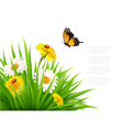 nature summer background with daisy flower vector image vector image