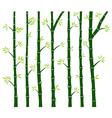 Bamboo Tree Wall Decal vector image vector image