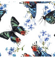 beautiful watercolor colorful butterflies vector image
