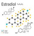 chemical formula of the estradiol molecule vector image