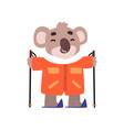 coala bear skiing cute animal cartoon character vector image
