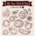 Fruit Hand-drawn Doodle set vector image vector image