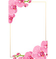 pink orchid flowers border frame template card vector image