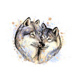 portrait wolves from a splash watercolor vector image vector image