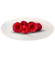 set of realistic raspberries vector image