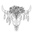 bull skull with rose flowers and feathers hanging vector image