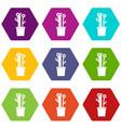 flowering cactus icon set color hexahedron vector image vector image