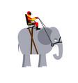 riding elephant racer on wild animal team of vector image