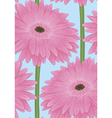 seamless background with pink gerbera flower vector image vector image