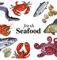 Colorful seafood banner poster design with place vector image vector image