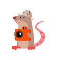 cute rat taking pictures with a camera funny vector image