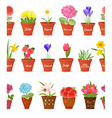 cute set seamless borders with lovely flowers vector image vector image