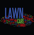 lawn care faq text background word cloud concept vector image vector image