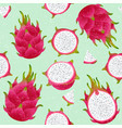 pitaya seamless pattern red ripe dragon fruit vector image